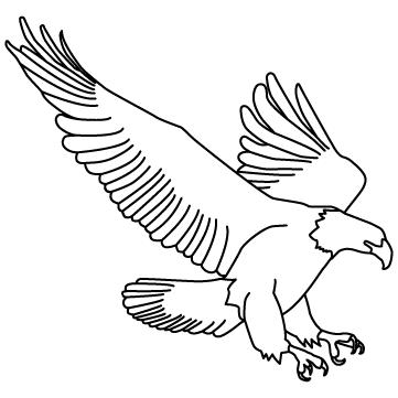 鷹のサムネイル