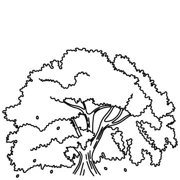 満開の桜のサムネイル