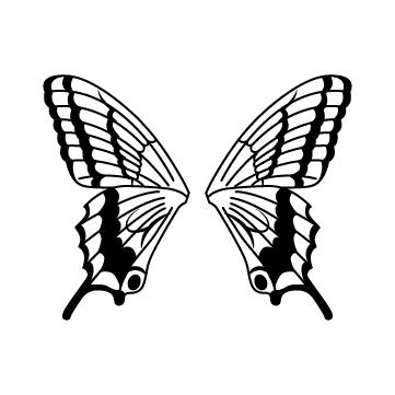 蝶々の羽根のサムネイル