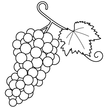 ブドウ(ぶどう / 葡萄)のサムネイル