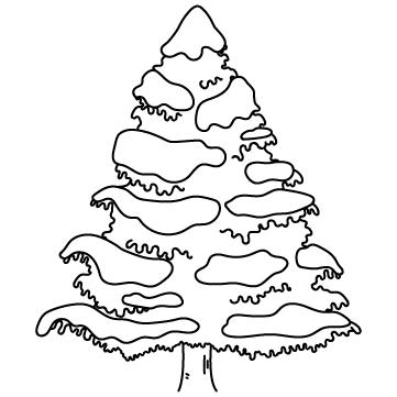 モミの木(雪あり)のサムネイル