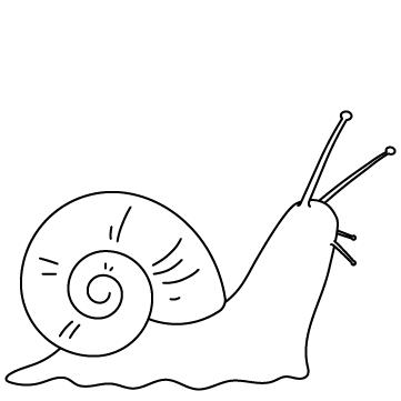 カタツムリ(蝸牛)のサムネイル